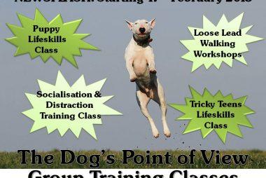 dog training classes worksop rotherham sheffield